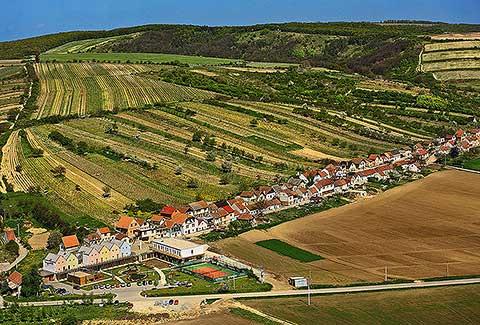 Visit Víno - foto 8