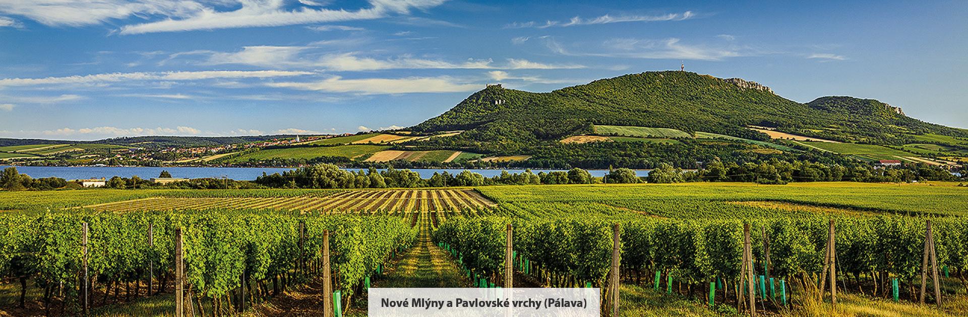 Nové Mlýny a Pavlovské vrchy (Pálava), zdroj: Libor Sváček, archiv Vydavatelství MCU